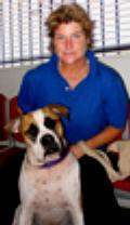 Client Testimonial Anne Pearson and Bulldog Bonzo