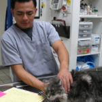Meet another of our decidated staff, Center-Sinai Animal Hospital Kennel Manager Jose, with pussycat.