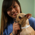 Jasmine-pet groomer & kennel attendant, with chihuahua doggie Niky. At Center-Sinai, west side L.A. veterinary hospital for dogs, cats & other small pets
