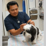 Meet our dedicated staff at Center-Sinai Animal Hospital! This is Jose, Veterirnary Assistant, working with doggy visitor
