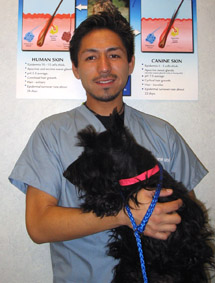 Pictured with gorgeous Scottie Dog, Daniel Sanchez - Receptionist at CSAH, was Kennel Manager formerly, then decided he'd like to work with pet parents as well as pets.