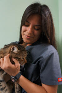Meet Yesenia - our dedicated veterinary staff member at Center-Sinai Animal Hospital. Receptionist Yesenia loves working with people. Pet lover Yesenia is also a Kennel Attendant.