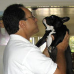 In the time of gestation - Breeding Frenchies can be nerve-wracking!